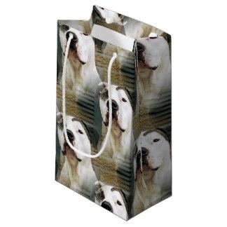 Pit Bull T-Bone Small Gift Bag