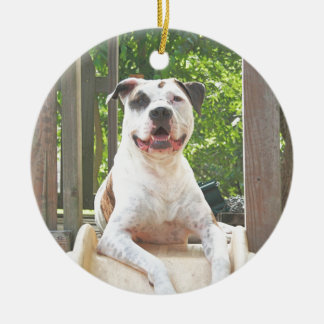 Pit Bull T-Bone's Tree House Ceramic Ornament