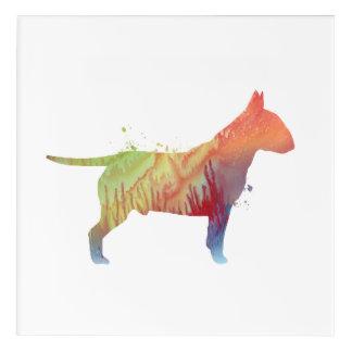 Pit bull terrier acrylic print
