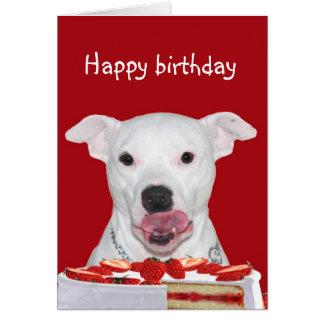 Pit Bull Terrier Birthday Card