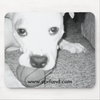 Pit bull with ball mousepad