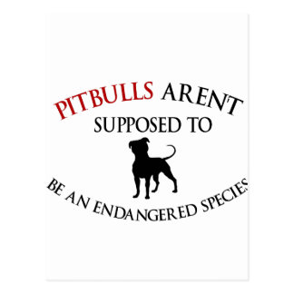 Pit bulls design cute postcard