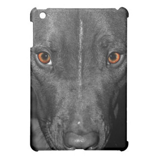 Pit Bull's Eyes (Black and white, color) iPad Mini Covers