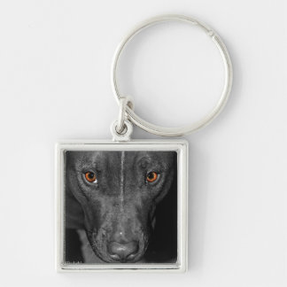 Pit Bull's Eyes (Black and white, color) Keychain