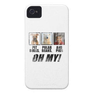 Pit bulls, Polar Beas, and pigs Faded.png iPhone 4 Cases