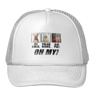 Pit bulls, Polar Beas, and pigs Faded.png Hats
