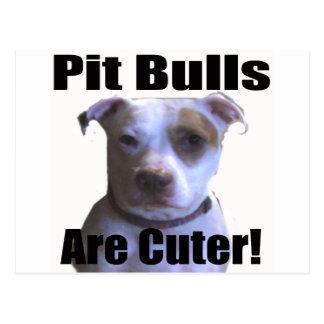 pit buls are cuter postcard