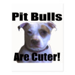 pit buls are cuter postcards