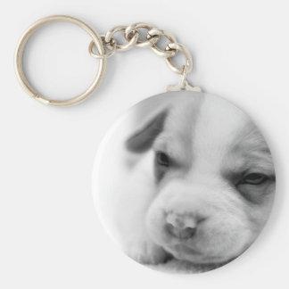Pit Puppy Keychain