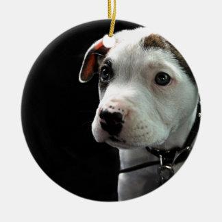 Pit Puppy T-Bone Ornament
