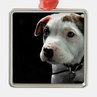 Pit Puppy T-Bone Christmas Tree Ornament