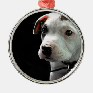 Pit Puppy T-Bone Ornaments