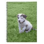 Pit Puppy T-Bone Spiral Notebook