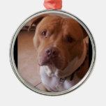 pitbull adorno navideño redondo de metal