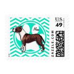 Pitbull; Aqua Green Chevron Postage Stamps