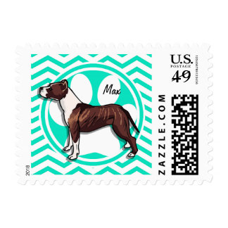 Pitbull; Aqua Green Chevron Postage Stamps