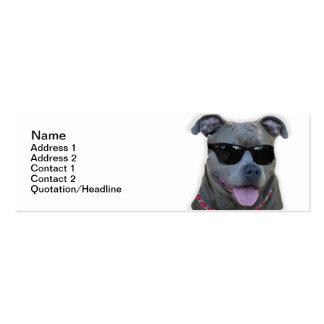 Pitbull azul con los vidrios tarjetas de visita mini