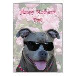 Pitbull azul feliz del día de madre con los vidrio tarjetón