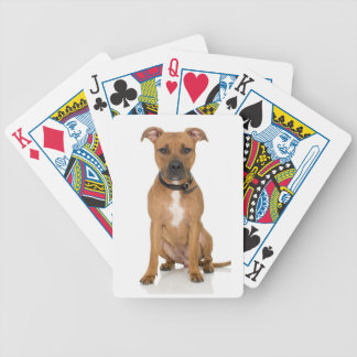 Pitbull Bicycle Playing Cards