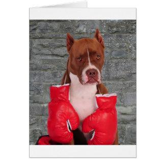 Pitbull Boxer Cards