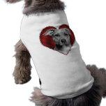 Pitbull con el corazón ropa de perros