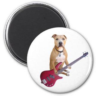 Pitbull con la guitarra imán de frigorífico