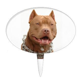 Pitbull dog cake topper