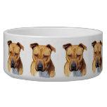 Pitbull dog dog water bowl