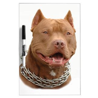Pitbull dog Dry-Erase whiteboards