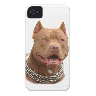 Pitbull dog iPhone 4 Case-Mate case