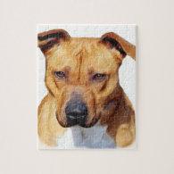 Pitbull dog jigsaw puzzles