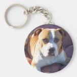 Pitbull Dog Key Chains
