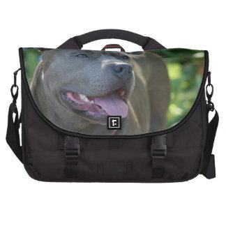Pitbull Dog Laptop Commuter Bag