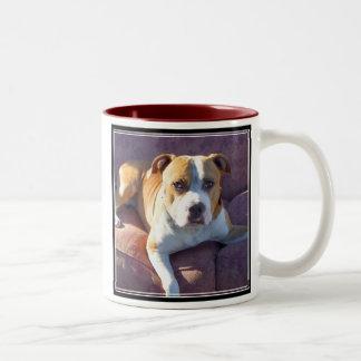 Pitbull Dog Mug