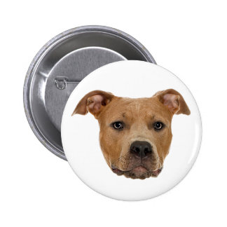 Pitbull Dog Pinback Button