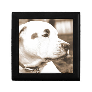 pitbull dog sepia color hate deed not breed gift box