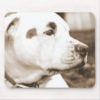 pitbull dog sepia color hate deed not breed mouse pad