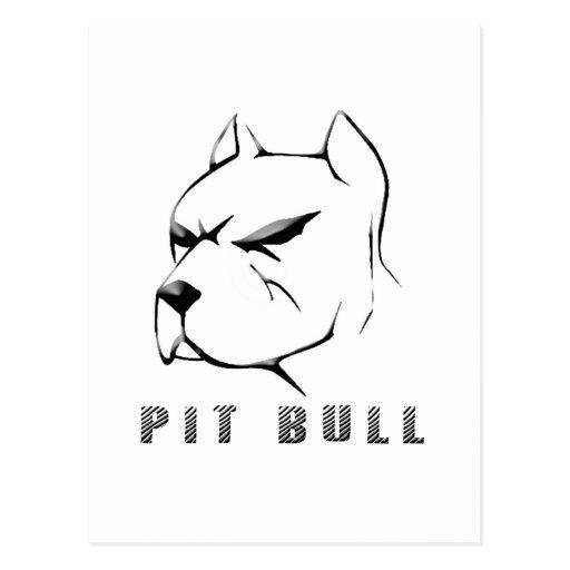 Pitbull draw postcard