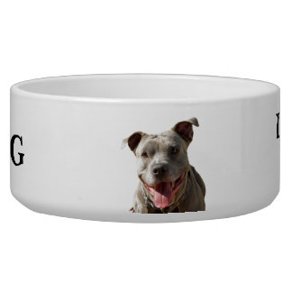 Pitbull Drool Warning Dog Bowl