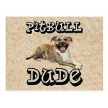PitBull DUDE - Tigger Postcards