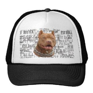 Pitbull hat
