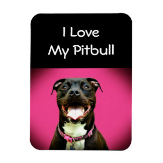 Pitbull Love Magnet