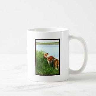 Pitbull mug