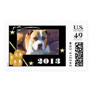 Pitbull New Years postage