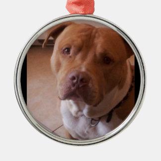 pitbull round metal christmas ornament