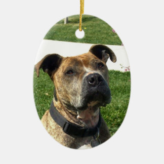 Pitbull Double-Sided Oval Ceramic Christmas Ornament
