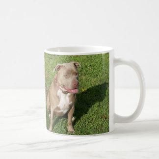 Pitbull pacífico taza básica blanca