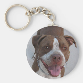 Pitbull Play With Me Keychain