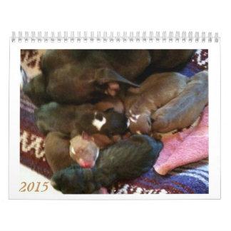 Pitbull Puppies Grow up Calendar