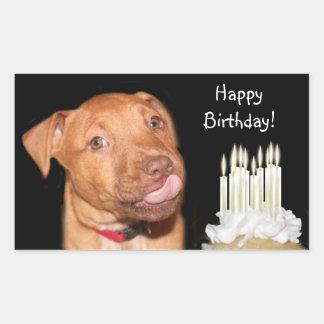 Pitbull puppy birthday rectangular sticker